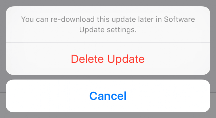 Remove Software Update File