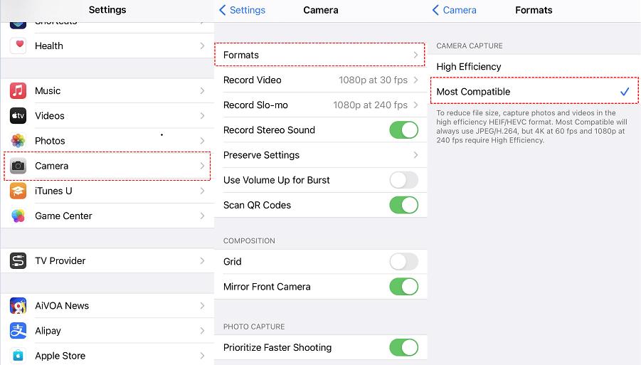 Camera Compatible Format