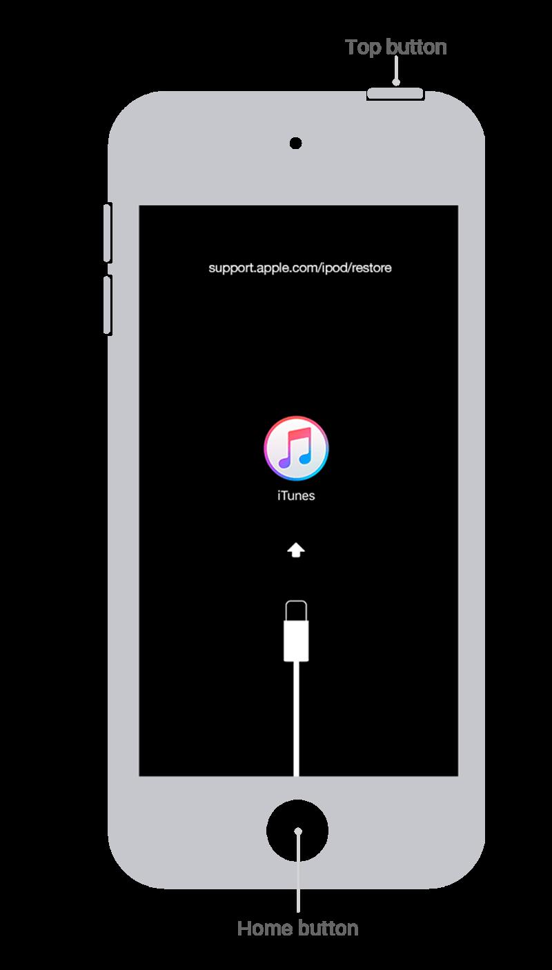Ipod Touch 6th Gen Restore Tech Spec