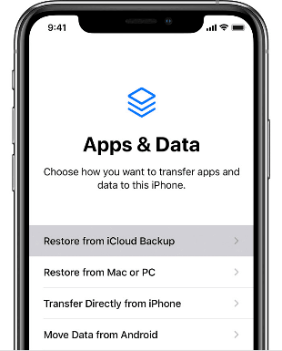 Choose Restore from iCloud Backup